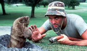 bill murray caddyshack.png